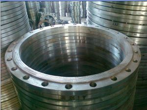 Large Diameter Forging Flange (300-6500mm) pictures & photos