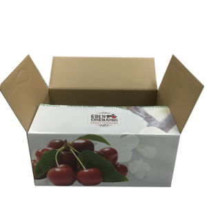 Durable Double Wall Packaging Cherry Fruit Packaging Box pictures & photos