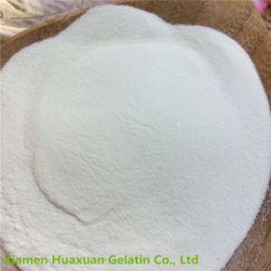 Hot Sale Best Quality Collagen for Fermentation pictures & photos