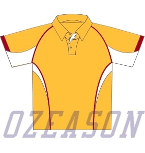 Best Quality New Design Sublimated Australian Cricket Team Jersey 2017 pictures & photos