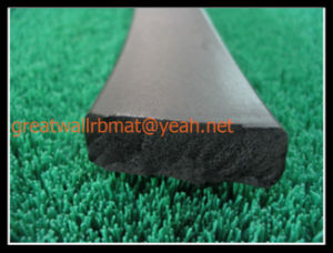 Various Specifi Cations of Sponge Rubber Strip Gw2007 pictures & photos