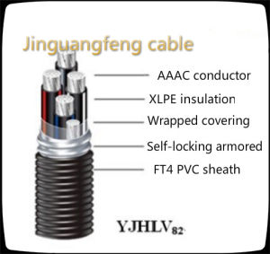 Yjlhvs2 XLPE/PVC Self-Locking Armored Aluminum Alloy Cable pictures & photos