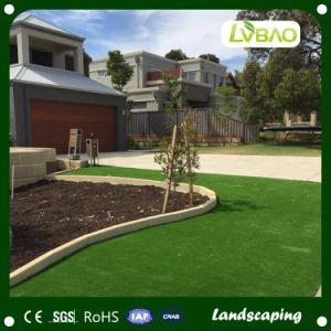 Premium Natural Green Landscape Artificial Grass pictures & photos