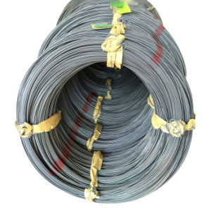Chq Saip Refind Steel Wire Swch35k for Hot Sale pictures & photos