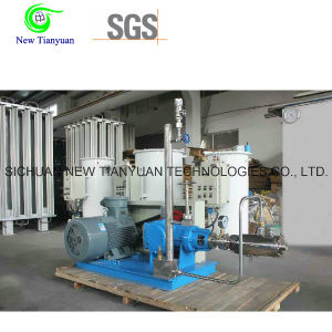 Cryogenic Liquid Pump LNG Pump for LNG Vaporizing Station for Packaging pictures & photos