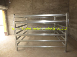 Metal Horse Yards, Cattle Fence Panel, Sheep Livestock Panel pictures & photos