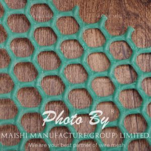 Green Ground Plastic Stabilisation Mesh pictures & photos