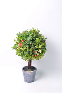 Handmade Milan Leaves Ball Plants Tree with Berry in Paper Mache Pot pictures & photos