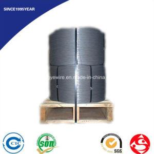 Hot Sale High Quality En-10270 Steel Door Wire pictures & photos