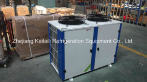 Klzbr404-15 Hermetic Scroll Refigeration Compressor Unit for Cold Storage pictures & photos