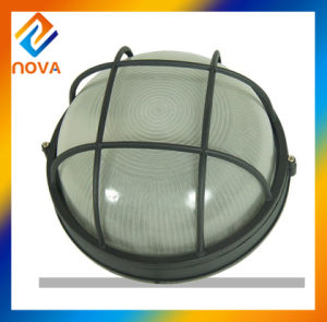 LED Ceiling Lamp and Stainless Steel Outdoor Ceiling Lamps pictures & photos
