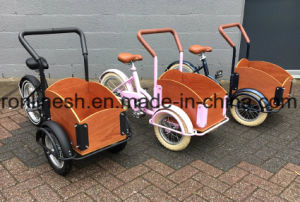 Mini Tricycle for Kids/Kids Cargo Bike/Toddler Cargo Bicycle/Three Wheel Cargo Bike for Kids/3 Wheel Children Trike CE pictures & photos