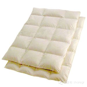 Single Goose Down Duvet Thin Cotton Blanket pictures & photos