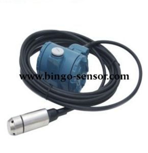 Submersible Pressure Transducer / Transmitter / Sensor pictures & photos