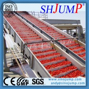 Air-Blowing Type/Bubble Surfing Washing Machine for Fruit and Vegetable Processing Line pictures & photos