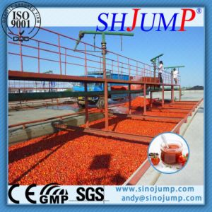 Industrial Tomato Paste Production Line-500tpd pictures & photos
