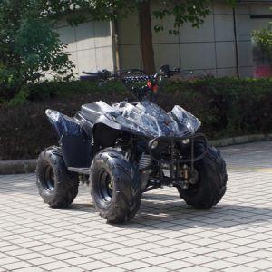 Fashion Newest 4 Wheeler Kids 50cc Quad ATV (A05) pictures & photos