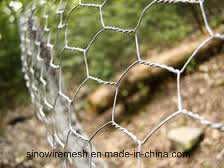 Sailin Chicken Wire Fence Netting pictures & photos