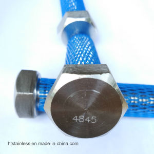 Duplex2520 1.4845 Hex Head Bolt pictures & photos