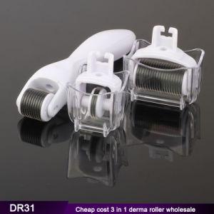 Manufacturer Price Titanium Derma Roller 3 in 1 Dermaroller for Face Care pictures & photos