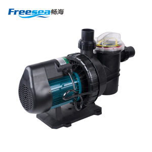 Horizontal Centrifugal Swimming Pool Filter Pump pictures & photos