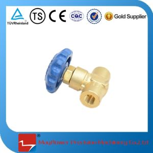 Dn10 Manual Globe Valve for Cryogenic Tank pictures & photos