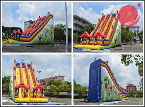 2017 Animal Bouncy Slide Inflatable Double Lane Bouncer Slide (T4-226) pictures & photos