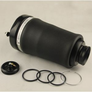 Front Air Spring for Mercedes-Benz W164 (A1643206013) pictures & photos