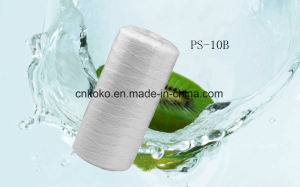 Factory PS Water Filter Cartridge pictures & photos