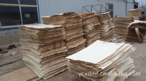 Rotary Cut Poplar Veneer 1270X840mm/1270X2520mm pictures & photos