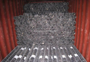 PVC Coated Hex. Wire Mesh / Chicken Wire Mesh pictures & photos