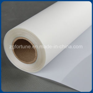 Outside Advertising Materials Eco Solvent Pet Film Rolls pictures & photos