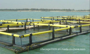 HDPE Square Aquaculture Farming Fish Cage Floating pictures & photos