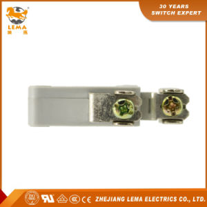 Lema Kw7-0L CCC Ce UL VDE Screw Terminal Micro Switch pictures & photos