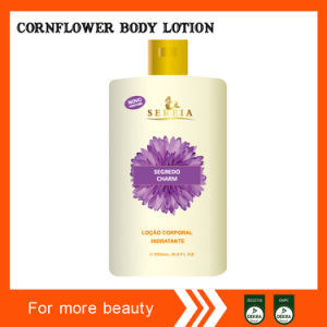 Cornflower Body Lotion for Middle East pictures & photos