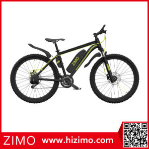 Low Price Green Power Electric Bike Made in China pictures & photos