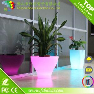 LED Lighted Planter Pots / LED Flower Pot Wholesale