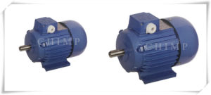 Ys Low Power Three Phase Induction Motor pictures & photos