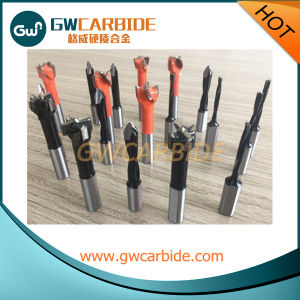 Solid Carbide Hinge Boring Bits Dowel Drill Router Bits pictures & photos