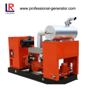 Natural Gas Biogas Generator 50kw with Brushless pictures & photos