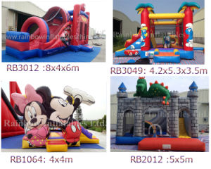 Hot Sale Inflatable Bouncer/Inflatable Mini Castle with Factory Price pictures & photos