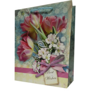 Wholesales Custom Cheap Gift Packaging Logo Printed Personalized Paper Bags pictures & photos