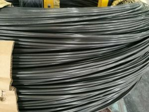 Spheroidized Annealed Wire 10b21 for Making Fasteners pictures & photos