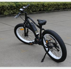 350W Newest Fat Tire Electric Bicycle pictures & photos