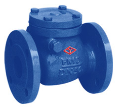 DIN Cast Iron Swing Check Valve pictures & photos
