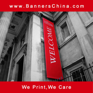 Outdoor Wall Hanging Flag Banner pictures & photos