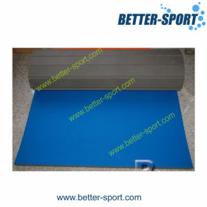 Roll Mat, Also Called Rolling Mat pictures & photos