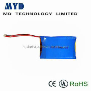 Customerized Li-Po Battery with Flexible Size for GPRS Navigation