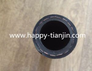 High Pressure Oil Delivery Hose pictures & photos