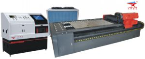 YAG Laser Cutting Machine Used in Metal Artware (TQL-LCY620-4115)